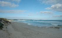"""In einer Umfrage der Universität von Sidney wurde """"Vivonne Bay"""" als eine der """"Top Beaches"""" von Australien bezeichnet. Westlich der Bucht liegt der 887 ha grosse Vivonne Bay Conservation Park, ein Naturreservat."""