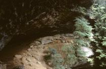 Von Pittsburgh folgten wir dem Tal des Ohio nach Süden. Dort besuchten wir zwei prähistorische Höhlen, die frühen amerikanischen Höhlenbewohnern (Archaic culture 8000-1000 v.Chr., Early Woodland Culture 1000 v. Chr – 50 n. Chr.?) als Behausungen dienten.