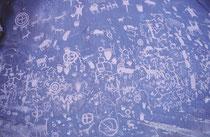 Auf der Fahrt vom Arches NP zum Monument Valley entdeckten wir diese Felswand bei einem Rastplatz, die übersät war mit Hunderten von Scharrbildern. Ob sie aus alter Zeit stamme oder neueren Datums sind, entzieht sich unserer Kenntnis.