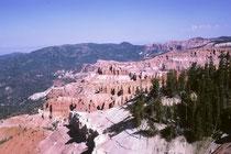 """Der Name des Parks beruht auf einer Verwechslung. Frühe Siedler hielten die häufigen Wacholder-Bäume für Thujas (engl.""""red cedar"""" oder """"white cedar)"""" und nannten die steilen, halbrunden, amphitheaterhaften Hangabbrüche """"breaks""""."""