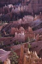 """Die """"Hoodoos"""" genannten turmartigen Gebilde aus Sedimentgesteinen können eine Höhe von bis zu 60 m erreichen. Wind, Wasser und Eis erodierten die Kante des Plateaus zu grossen Amphitheatern mit den bizarren Felsnadeln."""