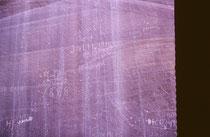 Neben weiteren Siedlern kamen Ende des 19. und  Anfang des 20. Jhd. auch Abenteurer, Bergleute, Soldaten und Banditen  ins Tal von Fruita. Sie hinterließen an einer Felswand der Capitol Gorge ihre Namen. Die frühesten stammen aus dem Jahr 1871.