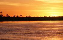 Der Chobe vereinigt sich bei Kazungula, im Vierländereck von Botswana-Namibia-Zambia-Zimbabwe, mit dem Zambezi (mit einer Länge von 2574 km der viertlängste Fluss Afrikas). Wir befuhren den Zambezi oberhalb der Viktoria Fälle zur Zeit des Sonnenuntergangs