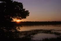 Solche stimmungsvollen Bilder, wie hier den Sonnenuntergang am Lake Ithaska, erwartet man nicht unbedingt wenn man von Minnesota spricht. Beim Herumwandern begegnet man in der Dämmerung Füchsen und Waschbären und kann über eine Biberburg stolpern.