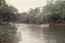 Fahrt auf dem Sarapiqui River.