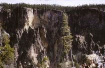 """Der am 1. März 1872 gegründete Yellowstone-Nationalpark in Wyoming ist der der älteste Nationalpark der Welt. Ursprünglich wollte man einen """"öffentlicher Park zur Wohltat und zum Vergnügen der Menschen"""" schaffen. Der Naturschutz kam erst später."""