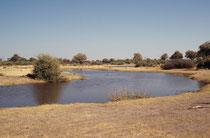 Die nördliche Grenze des Moremi Wildreservats wird vom Khwai River gebildet, der ein Abfluss des Okavango ist. Wir fuhren diesem Fluss entlang, bevor wir dann in den Chobe National Park gelangten.
