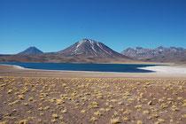 Hier die Laguna Miscanti. Der See enthält Brackwasser und liegt auf 4120 m Höhe. Es war dort auch entsprechend kalt. Die beiden Seen sind ebenfalls Teil der Los Flamencos National Reserve aber leider waren überhaupt keine Flamingos oder andere Vögel dort.