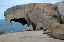 Mit etwas Phantasie sehen die Felsen aus wie Gesichter, Ameisenbären, UFOs, Nasen  oder weit aufgerissene Mäuler.