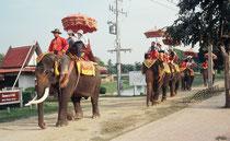"""Sightseeing in Autthaya im """"Elefantentaxi"""""""