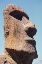 Der Ausdruck des fein ausgestalteten Kopfes ist fast mystisch. Unter tief liegenden Augenhöhlen beherrscht eine grosse, sorgfältig ausgebildete Nase das Gesicht. Ein breites, vorgeschobenes Kinn ergänzt den verschlossenen Gesamteindruck.