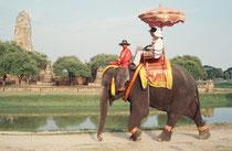 """Sightseeing in Autthaya. Die Elefanten werden in einem grossen Stallgebäude gehalten. Die Mahouts sind alle gleich altertümlich gekleidet (""""uniformiert"""")."""