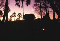 Abendstimmung im Camp. Die Sonne ist untergegangen, die ersten Sterne werden sichtbar und das Lagerfeuer brennt. Wenn sich zudem ein wachsamer Trupp Paviane in den Bäumen zum Verbringen der Nacht eingerichtet hatte, war das zudem durchaus beruhigend.