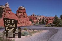 """Der ca. 8000 km² grosse Dixie National Forest in S-Utah (geschütztes Gebiet mit nachhaltiger Nutzung erneuerbarer natürlicher Ressourcen) wird von Cedar City aus verwaltet. Der """"Red Canyon"""" befindet sich unmittelbar neben der Autostrasse."""