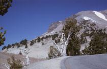 """Auf gut ausgebauter Strasse ging es immer höher – und immer näher an den Berg.. Beim Parkplatz am Ende der Strasse zogen wir die Bergschuhe an und wanderten zusammen mit anderen Abenteuerlustigen über den 4,5 km langen """"Lassen Peak Trail"""" gipfelwärts."""