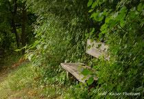 ein stilles Plätzchen - August 2013