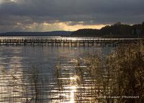 Steinhuder Meer - Oktober 2013