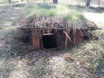 Schavener Heide / unterirdische Schützengräben