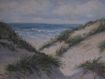 Die Nordsee mit Dünen