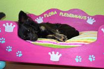 Mein Prinzessinen Bett:hat Sandra für mich sooo schön angemalt