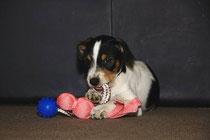 2 Monate alt