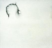 Métamorphose plumes-plumes