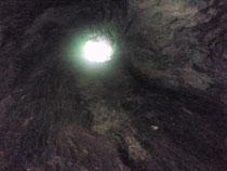この木、中が完全な空洞に・・・  発見者 もちろん副隊長さん