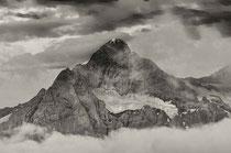 Wetterhorn, Grindelwald 2008