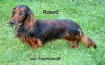 Roland von Aranmanoth