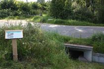 Infopunkt Wanderweg