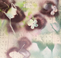 copyright nathalie arun, bilderserie japan, sakura 11