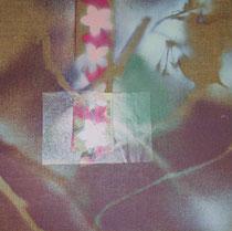 copyright nathalie arun, bilderserie japan, sakura 10