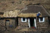 Lésotho, réfection d'un toit en chaume