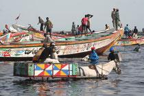 Sénégal, retour de pêche à Mbour