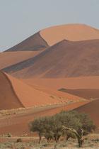Namibie, dune du park de Naukfluft près de Sossusvlei