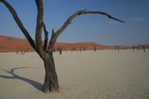 Namibie, lac séché de Sossusvlei