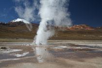 Chili, Geyser d'El Tatio 4280 m d'altitude.