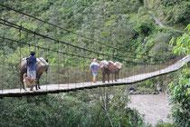 Equateur, Région de Banos