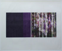 Durchsicht Nr. 2 (Transparency nr. 2), 2007.  Inkjet-Print and High pressure process on Japanese Paper. Size:  70 x 100 cm