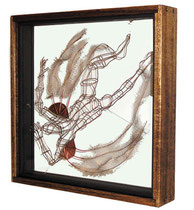 The Specimen. 2003. Wire, glass, wood. 100 x 80 x 70cm. Owned by the artist. © Charles Rocco