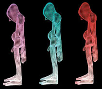 Time Of Tandem Errant Multicoloureds. 2003. Wire mesh. 90 x 150 x 30cm. © Charles Rocco