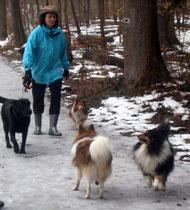 Andrea mit Murphy, Cindy, A.J. und Joschi
