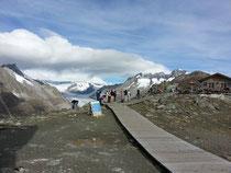 Auf dem Eggishorn mit Blick auf Aletschgletscher und Viktoriaplatz