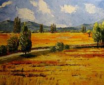 2010 - Campagna - olio su tela - 40x50 cm