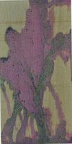 Serie Procesos transitorios 04 - 60x30 cm