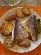 Riba-Fish