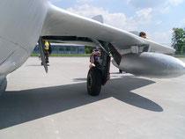 MiG15bis 3825-17