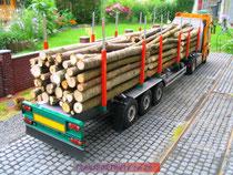 tw124-timbertrailer12