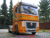 tw124-magnum2008gelb-03