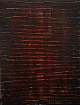 sin título, 2001, técnica mixta sobre lienzo, 60x40 cm